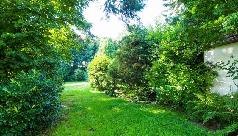 11027 Garten (2)
