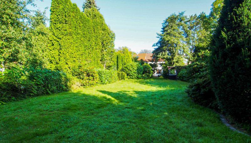 11027 Garten (4)