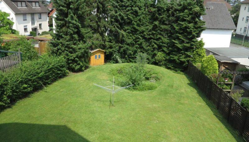 20786 Blick in den Garten