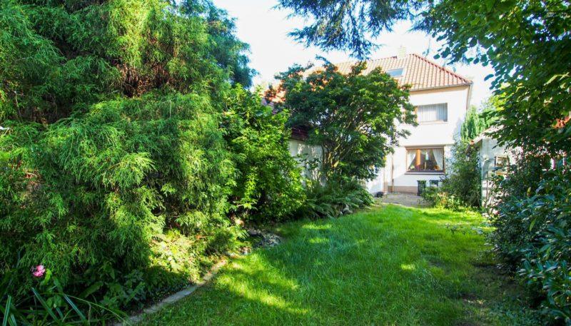 11027 Rückansicht Garten